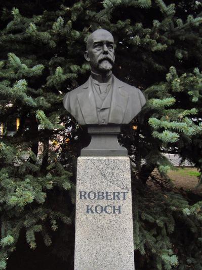 Pomnik Roberta Kocha, ustawiony w stulecie przyznania Nagrody Nobla