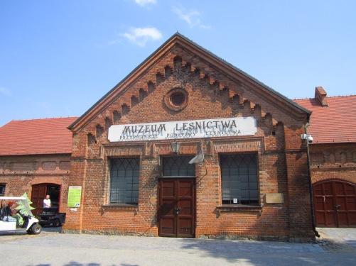 Jeden z wielu budynków Muzeum Leśnictwa