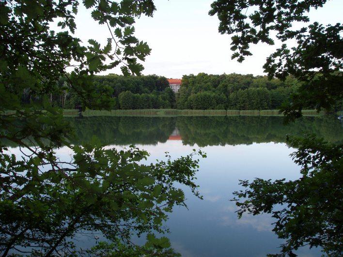 Widok na Jezioro Góreckie z widokiem na muzeum WPN