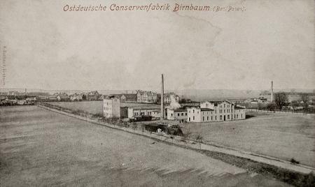1905_miedzychod