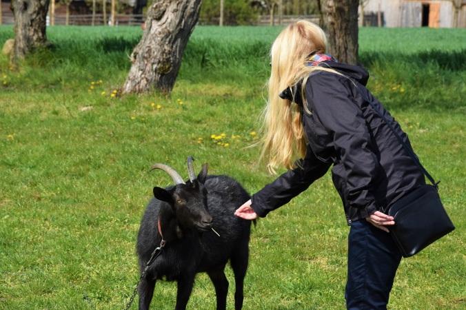 Ania wita się z czarną kozą